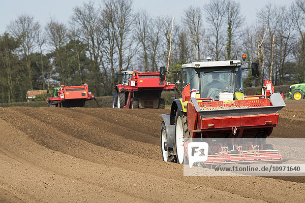 Planting seed potato in freshly prepared seed bed using a Grimme seed drill pulled by a Claas ARES 816RZ tractor; Yorkshire  England