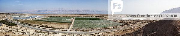 Dead Sea road and the Jordan Rift Valley; Jordan Valley  Israel Dead Sea road and the Jordan Rift Valley; Jordan Valley, Israel