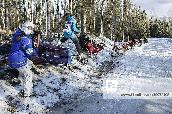 Anna Berington and handler take a tight turn at Goose Lake during the ceremonial start day of Iditarod 2015 in Anchorage  Alaska.