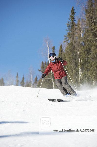 Downhill skier at Mt. Aurora Skiland near Cleary Summit north of Fairbanks  Alaska