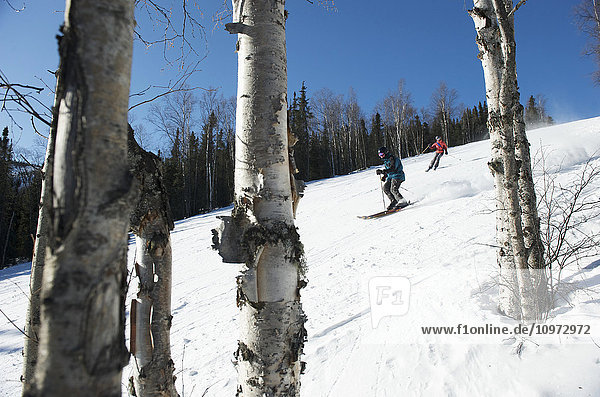 Downhill skiers at Mt. Aurora Skiland near Cleary Summit north of Fairbanks  Alaska
