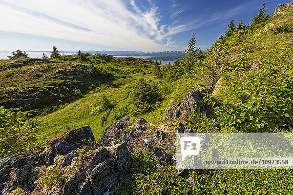 Hiker on a trail on the alpine hillside of Pillar Mountain  Kodiak Island  Southwest Alaska