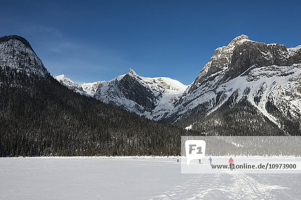 'Walking and skiing in the snow on frozen Lake Louise; Lake Louise  Alberta  Canada'