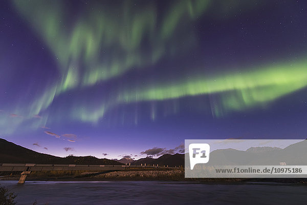 The aurora borealis dances in the sky over the Dietrich River and the Trans Alaska Pipeline in the Brooks Range north of Wiseman  Alaska.