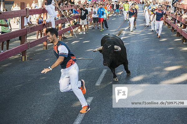 'Festival in Alcala de Henares and bull running; Madrid  Spain'