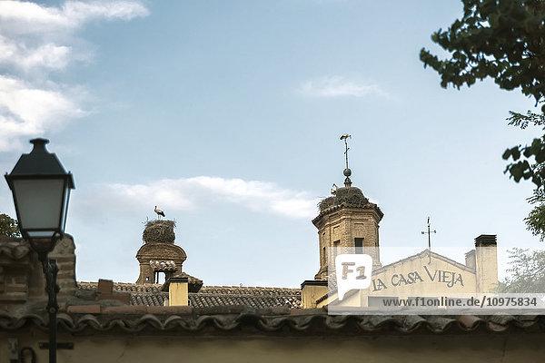'Downtown Alcala de Henares  a historical and charming city near to Madrid; Alcala de Henares  Madrid  Spain'