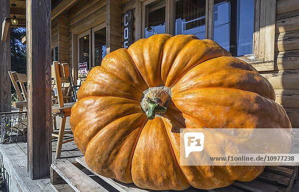 'Giant pumpkin on a porch near Murillo; Ontario  Canada'
