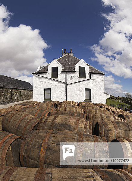 'Numerous wooden barrels outside in a lot; Isle of Islay  Scotland'
