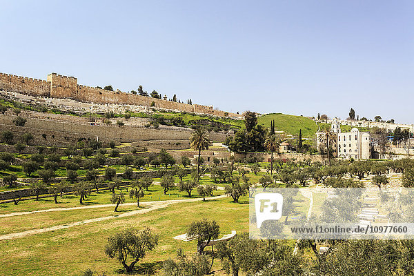 'Eastern Gate and the Old city walls of Jerusalem  Kidron Valley; Jerusalem  Israel' 'Eastern Gate and the Old city walls of Jerusalem, Kidron Valley; Jerusalem, Israel'