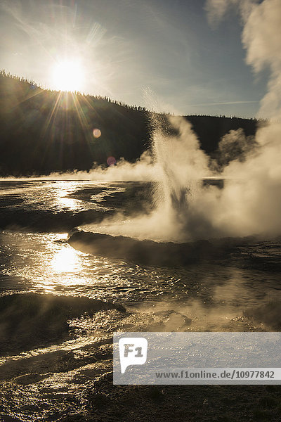 'Evening sun shines through a geyser in Yellowstone National Park; Wyoming  United States of America'