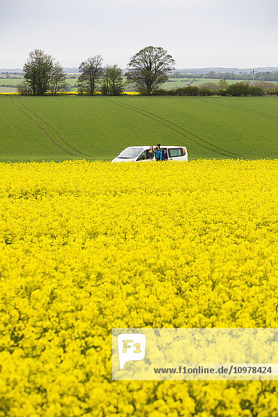 'A drive through the English countryside which is covered in vibrant yellow Rapeseed flowers; Cotswolds  England'