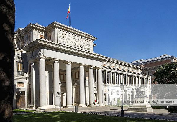 'Prado  Museum of Art; Madrid  Spain'