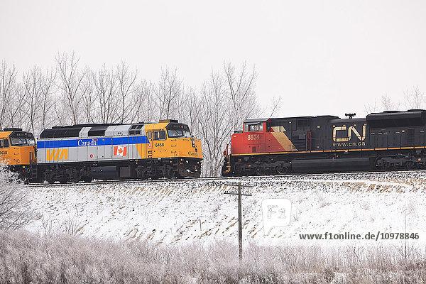 'Via Rail train and Canadian National Railroad (CN) locomotives; Winnipeg  Manitoba  Canada'