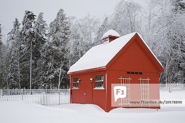 'Red barn style storage shed with frost and snow-covered trees in winter; Eastern Townships  Quebec  Canada'