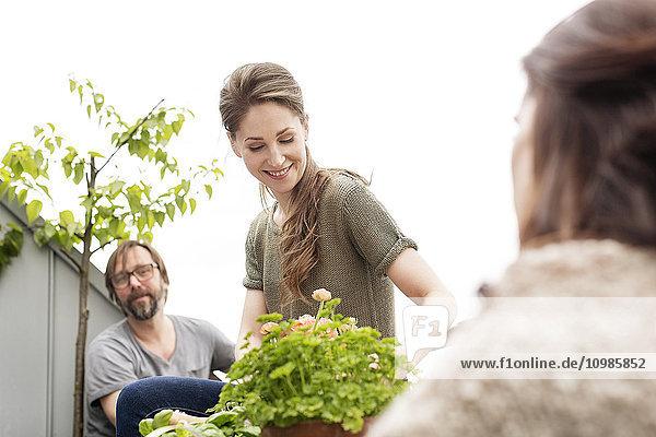 Lächelnde junge Frau mit Freunden auf dem Balkon