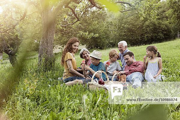 Großfamilie beim Picknick auf der Wiese