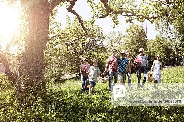 Familienwanderung mit Picknickkörben auf der Wiese