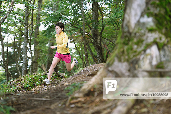 Young Japanese woman trail running at Mount Daibosatsu  Yamanashi Prefecture  Japan