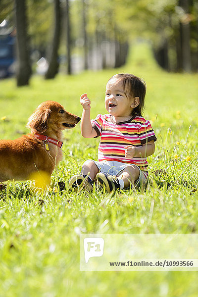 Kid playing with dog in a city park
