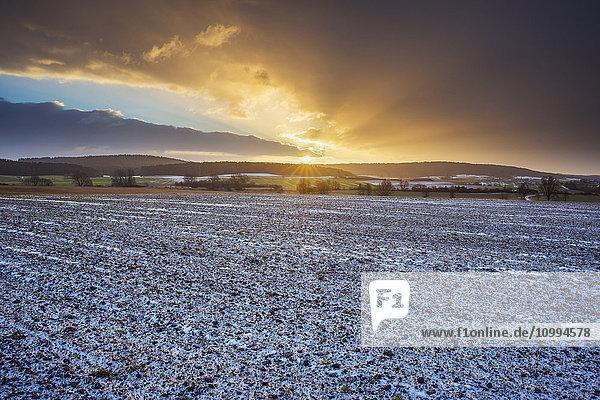 Field Landscape at Sunrise in the Winter  Dietersdorf  Coburg  Bavaria  Germany