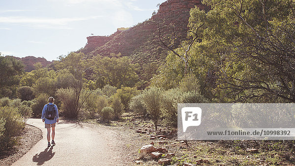 Australia  Outback  Northern Territory  Red Centre  West Macdonnel Ranges  Kings Canyon  Woman walking down mountain road