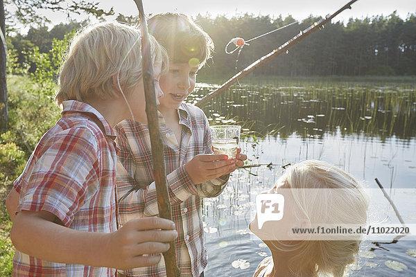 Brüder und Schwestern beim Fischen am sonnigen Teich