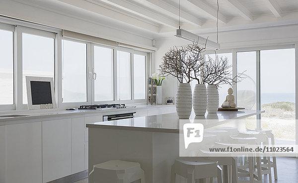 Modern white kitchen home showcase interior