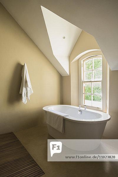 Home showcase soaking tub in bathroom