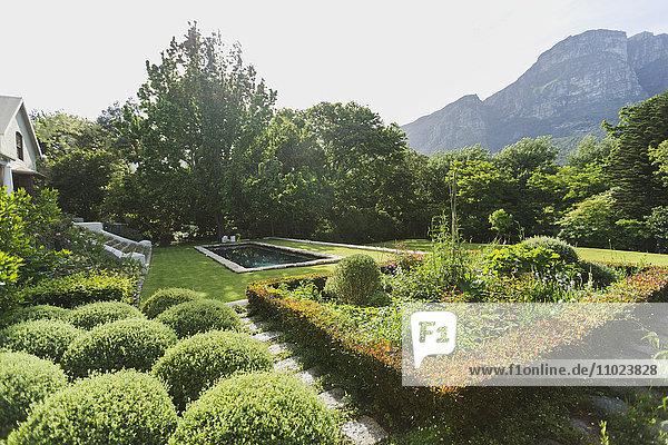 Lush sunny green garden with mountain view