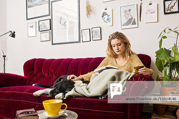 Woman reading book while sitting with dog on sofa at home Woman reading book while sitting with dog on sofa at home