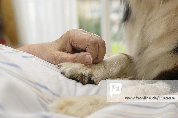 Tiergestützte Therapie im Seniorenheim