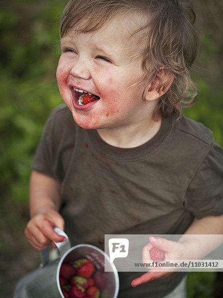 Boy eating strawberry