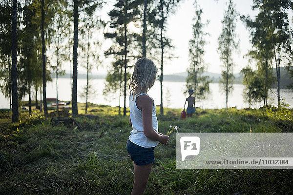 Girl picking flowers  Dalarna  Sweden