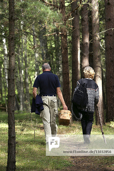 Two seniors walking in the wood.