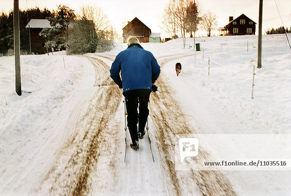 A man with a kick-sled and a dog  Sweden.