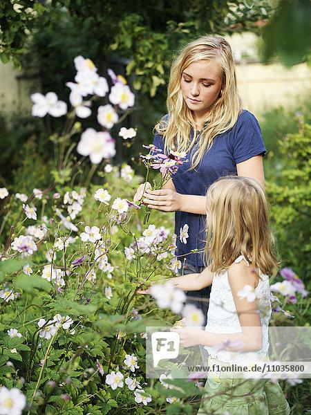 Two sisters in a flourishing garden  Sweden.