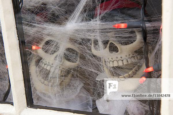Dekorative Halloween-Skelette mit Blick durchs Fenster