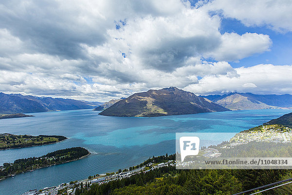 Forested islands in lake  Queenstown  Otago  New Zealand