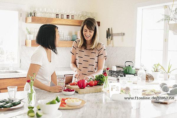 Zwei Personen  Frauen in einer Küche  die das Mittagessen vorbereiten.