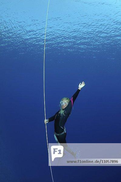 Apnoetauchen  Freitauchen  Rotes Meer  Ägypten  Afrika