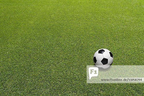 Rasen  Fußball