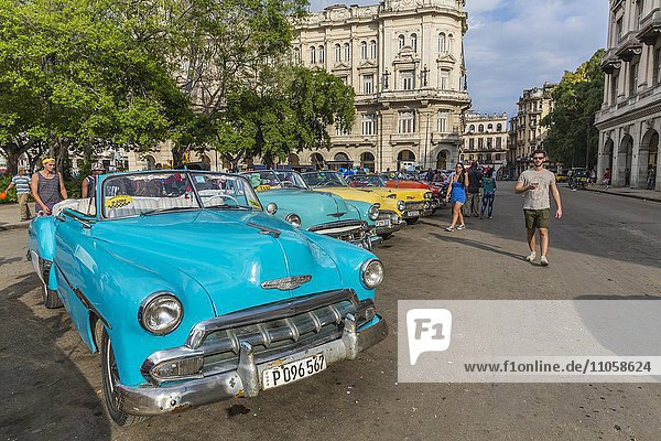 Oldtimer Taxis parken an der Straße  Havanna  Kuba  Nordamerika