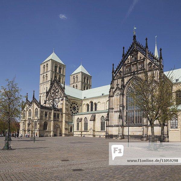 Münster Cathedral  Münster  Münsterland  North Rhine-Westphalia  Germany  Europe