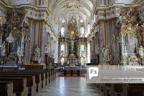 Innenansicht mit Altarbereich  Kirche St. Mariä Himmelfahrt im Kloster Fürstenfeld  ehemalige Zisterzienserabtei  Fürstenfeldbruck  Bayern  Deutschland  Europa