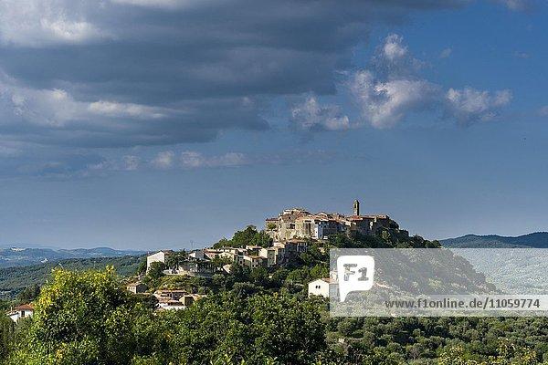 Typische Toskana-Landschaft mit Hügeln und Bäumen  Blick auf eine Stadt auf einem Hügel  Montegiovi  Toskana  Italien  Europa