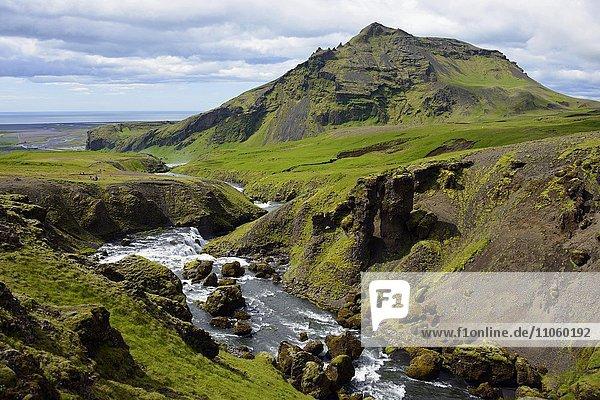 Fluss Skoga  Sudurland  Island  Europa