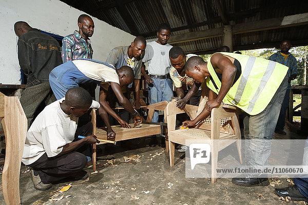 Lehrlinge arbeiten an einem Stuhl  Tischlerei und Schreiner Werkstatt  Matamba-Solo  Provinz Bandundu  Republik Kongo