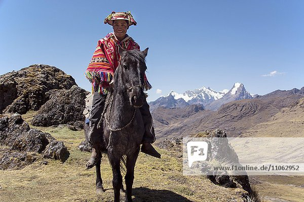 Indio mountain guide with colorful poncho riding on horse in the mountains  Andes  Lares  near Cusco  Peru  South America