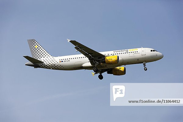 Vueling Airlines A320 Airbus on landing approach to Franz Josef Strauss Airport  Munich  Upper Bavaria  Germany  Europe
