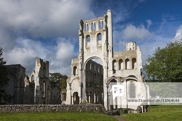 Jumièges Abbey ruins  Jumièges  Seine-Maritime  Normandy  France  Europe